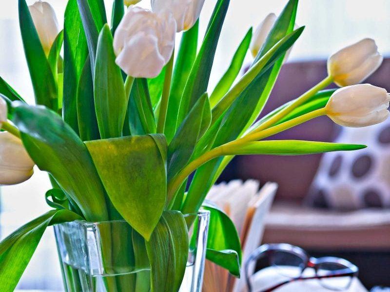 Frühlingsangebote & Arrangements für Ostern in Bad Wörishofen