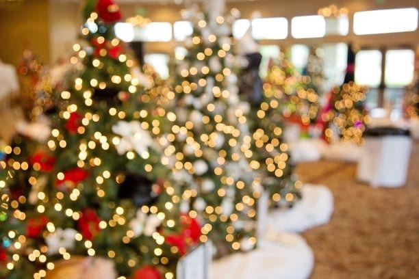 Weihnachtsbäume verpixelt Hotel Sonnengarten